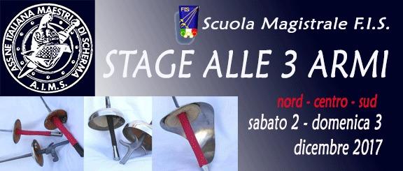Stage 3 armi Scuola Magistrale AIMS-FIS 2017