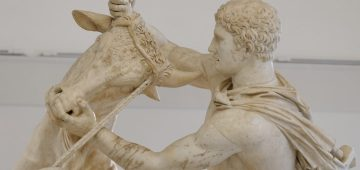 Toro Farnese al MAN