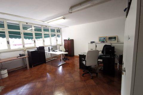 Segreteria Sportiva (2)